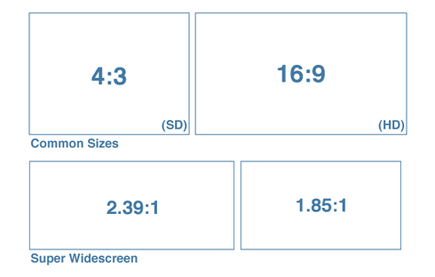 For professional videos on your site, the 16:9 aspect ratio is usually best.